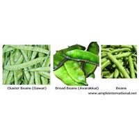 Gawar Beans