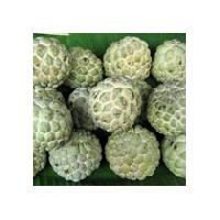 Frozen Custard Apple