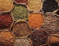 Organic Indian Pulses
