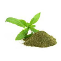 Green Stevia Powder