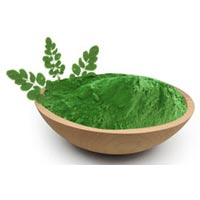 Powdered Moringa Leaves