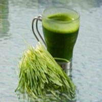 Multi Green Juice Powder