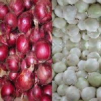 Red Onions, White Onions