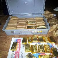 Gold Bars - Radiant Gold Miner Ltd