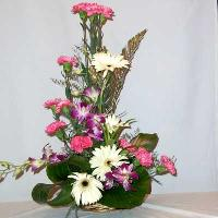 Flower Gift Baskets  B - 43