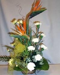 Ornamental Flowers B - 4