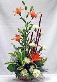 Ornamental Flowers B - 5