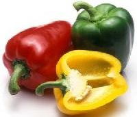 Color Capsicums
