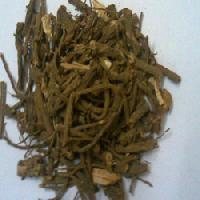 Medicinal Coleus Forskohlii Roots