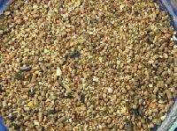 Animal Poultry Feed Ingredients
