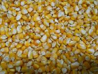 Yellow Maize Seeds For Animals