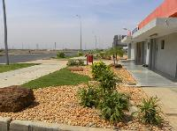 Landscaping Services, Gardening Services
