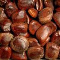 Tamarind (imli Seeds)