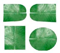 Artificial Banana Leaves