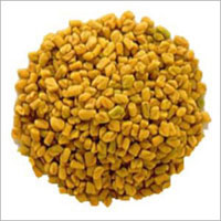 Premium Quality Fenugreek Seeds