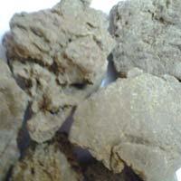 Annual Moringa Seed Oil Cake Exporters