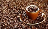 Commercial Blend Filter Coffee Beans