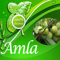 Herbal Supplement - Amla Capsule