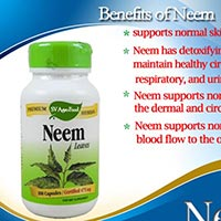 Herbal Supplement, Neem Capsule