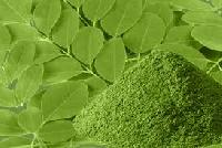 Pure Organic Certified Moringa Leaf Powder