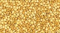 Split Yellow Peas