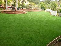 Artificial Grass