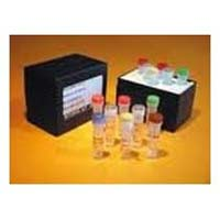 Pcr Reagent Kits