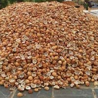 Dry Coconut(copra)