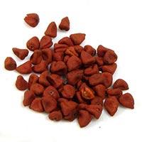 Annatto Seed (bixa Orellana)