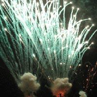 Firework Services