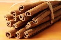 Cinnamon Sticks - Thanh Hien Enterprise