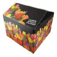 Multi Color Printed Corrugated Boxes