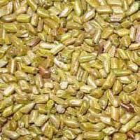 Cassia Semen Torea Seeds
