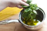 Basil Oil Sweet Natural