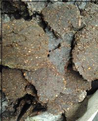 pure neem oil cake