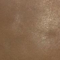 Cow Burnish Leather