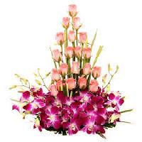 Flowers N Petals
