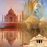Tour Package India