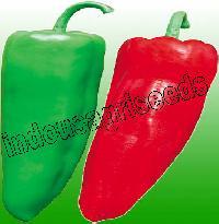 Indo Us Ruma F1 Hybrid Pepper Seeds