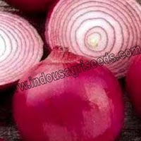 Royal Red Onion