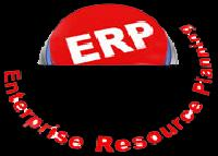 erp development services