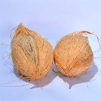 Coconut 01