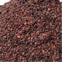 Sesame Seeds