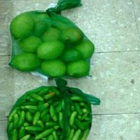 Curry Mango