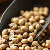 Indian Coriander Seeds- Eagle Grade
