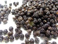 Dried Papaya Seeds