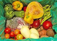 Organic Processed Food Ofd - 03