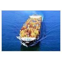 Export & Import Consultants