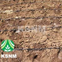 Agricultural Drip System