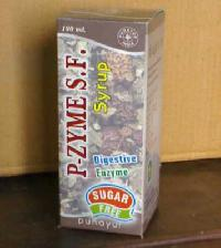 P-Zyme SF Syrup (sugar free)